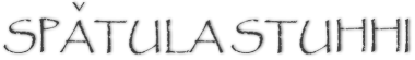 Logo for Spatula Stuhhi